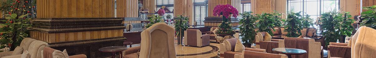 Hotel & Hospitality